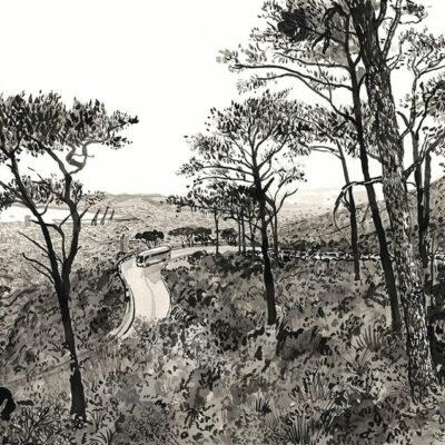 Tafelberg Road With Bus