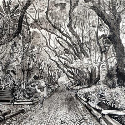 Camphor Avenue, Kirstenbosch