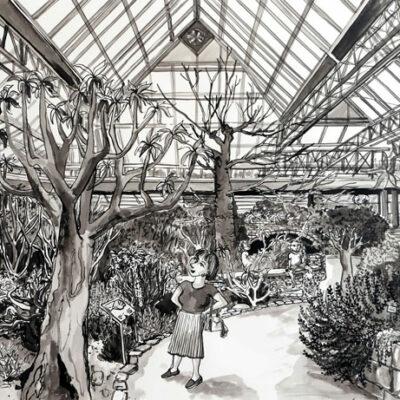 Greenhouse, Kirstenbosch