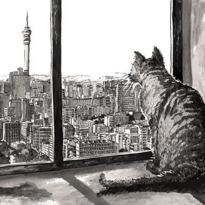 Hillbrow Pussy with a view